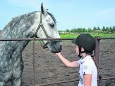 кони1