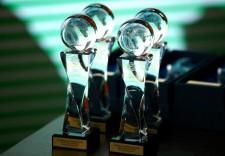 Награда в Год экологии (Копировать)