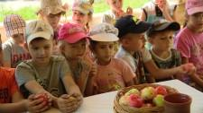 СВ Необычайное подворье яблочный спас